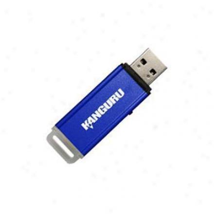 Kanguru Solutions Alk-128k Flashblu Ii 128gb 2.0 Flash Drive - Blue