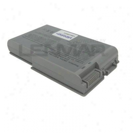 Lenmar Enterprises Dell Freedom D500/d60 Series