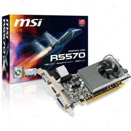 Mei Microstar Radeon Hd5570 1gb Ddr2
