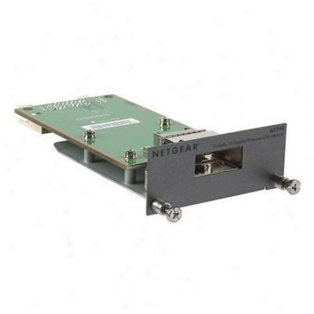 Netgear Prosafe 10gb Cx4 Module