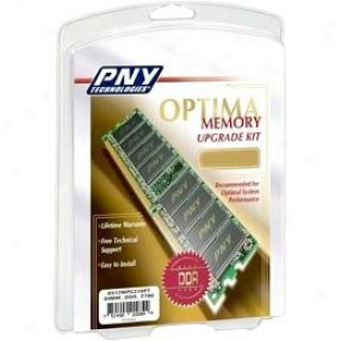 Pny Md1024sd1-333 1gb Pc2700 Ddr Sdram Dexktop Dimm Chip