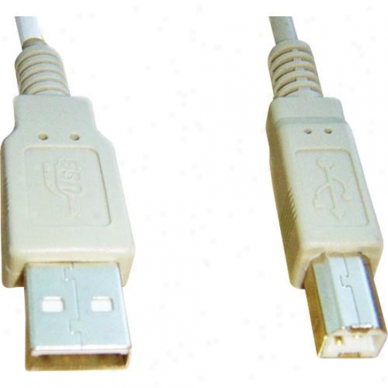 Ppa Int'l 20-foot High-speed A Male To B Male Usb 2.0 Cable