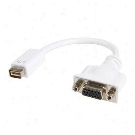 Startech Mini Dvi/vga Video Cable Adapt