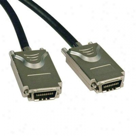 Tripp Lite 1m External Sqs Cable