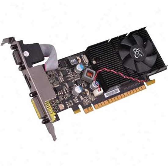 Xfx Nvidia Geforce G210 1gb Ddr3 Pci Experss 2.0 Low Prfile Video Card