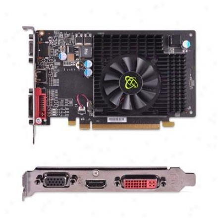 Xfx Radeon Hd 5570 1gb Ddr3 Pci Speedy conveyance 2.1 Video Card - Hd-557x-zhl2