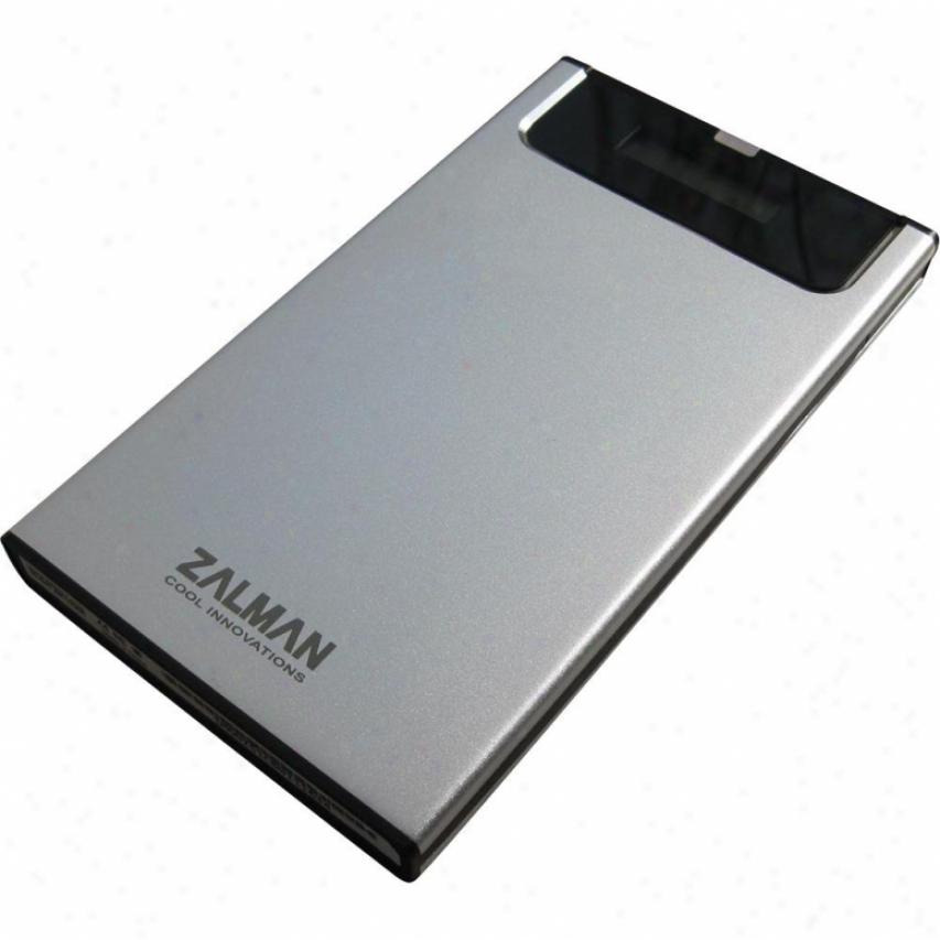 Zalman Hdd Go driving Enclosure Silver