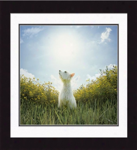 'clarence, Oh Heavenly Dog' Framed Print