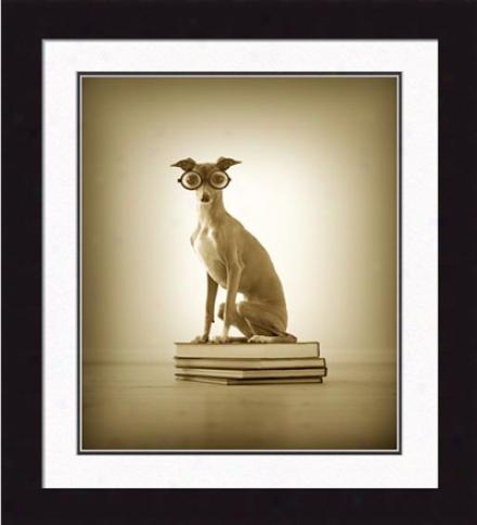 'monte, The Bookworm' Framed Print