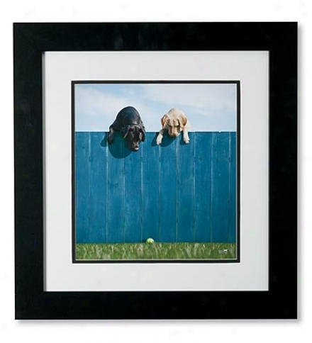 'out Of The Park' Framed Print By Ron Schmidt