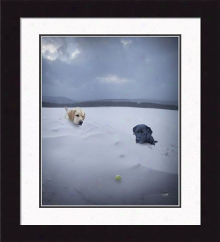 'snow Day' Framed Print