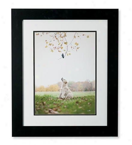 'spot' Framed Print By Ron Schmidt