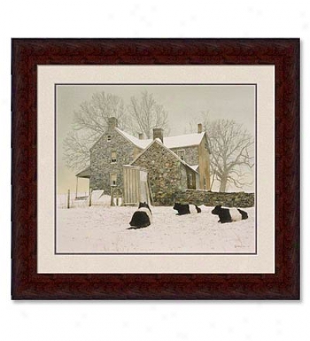 'the Galloways' Framed Print By Peter Sculthorpe