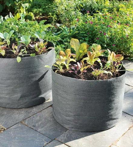 20 Gallon Grow Pot Portable Vegetable Growing Container