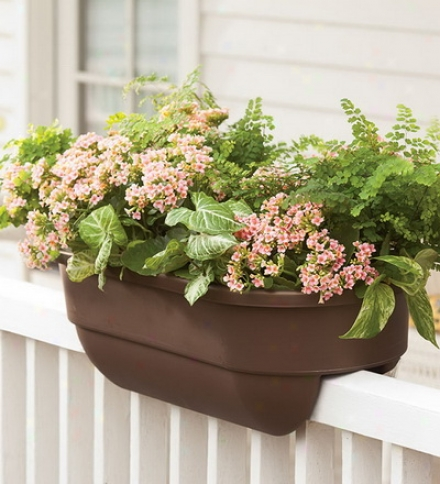 "30""l Polypropylene Railing Planters For 2"" X 6"" Porch Or Deck"