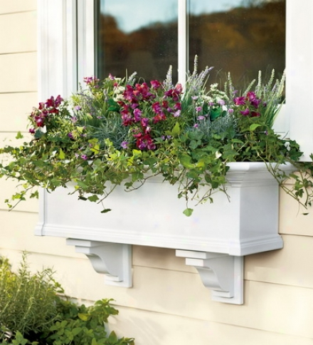 5' Easy-care Yorkshird Windoww Box With A Sub-irrigation Water System