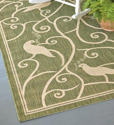 "7'10"" X 10'10"" Indoor/outdoor All-weather Polypropylene Songbirds Area Rug"