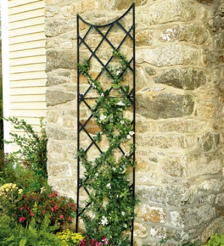 9'h Extra Tall Powder-coated Steel Black Trellis