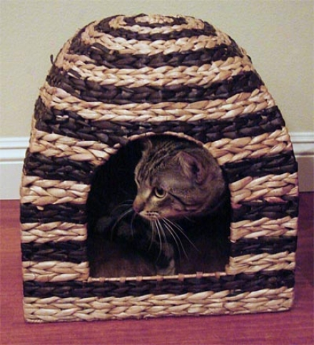 Banana Leaf Hooded Pet Bed With Soft Inner Lining