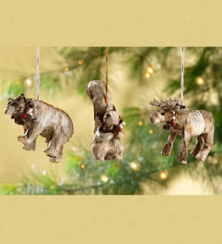 Birch Ornaments, Set Of 3
