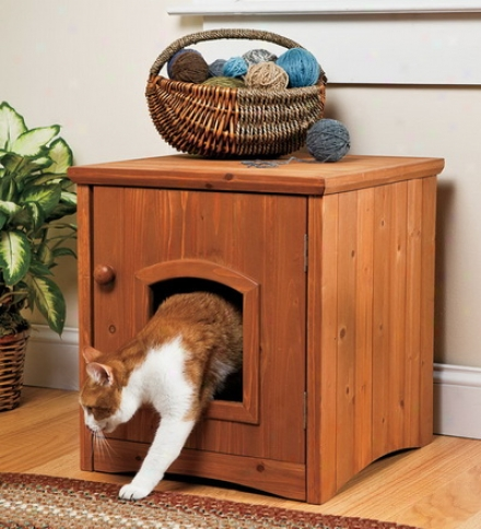 Cabinet Style Cat Washroom With Door
