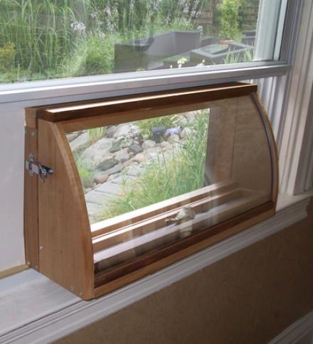 Deluxe In-house Window Bird Feeder