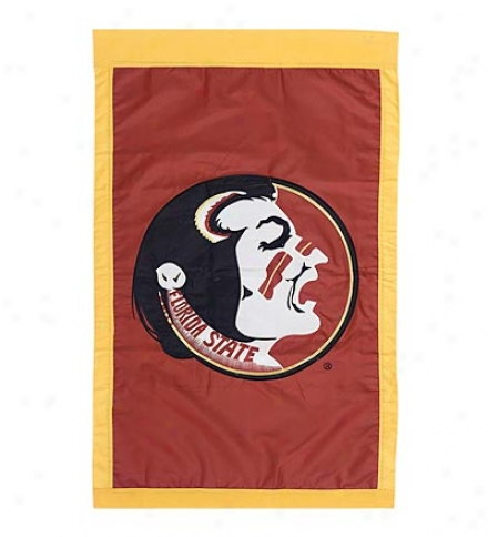 Double-sided Fade-resistant Official Collegiate House Flag