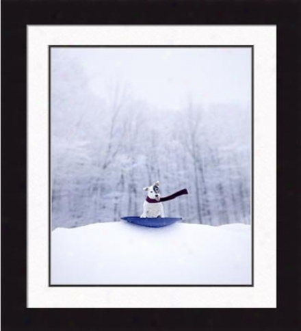 Gallery Quality 'jack Frost' Framed Print By Ron Schmidt