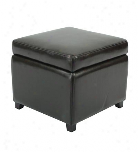 Jonahtan Bi-cast Leather Storage Ottoman