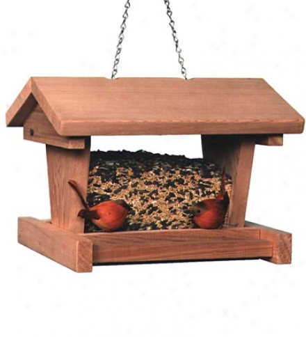 Large Cabin Feeder