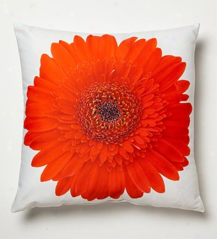 Lava Fall Colors Photo Printed Pillows
