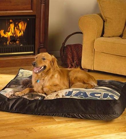 Medium Photo Dog Bed