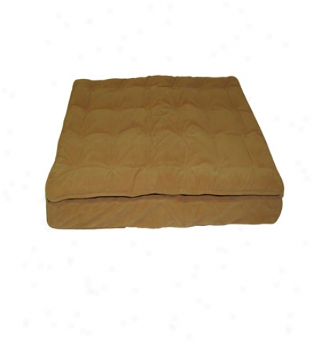Medium Pillow Top Mattress Pet Bde