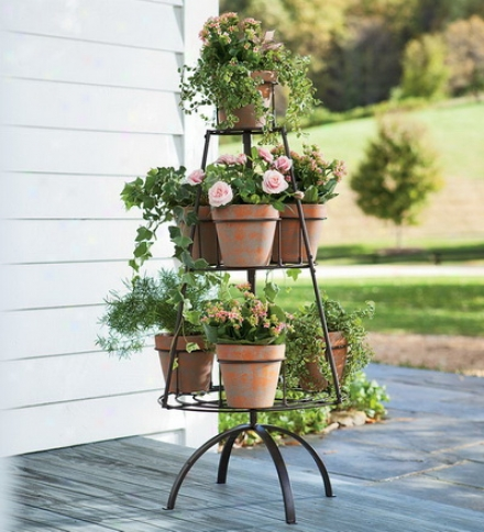 Metal Tree Shapde Plant Stand With Terra Cotta Pots