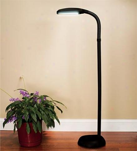 Regular Spectrum® Daylight Floor Lamp