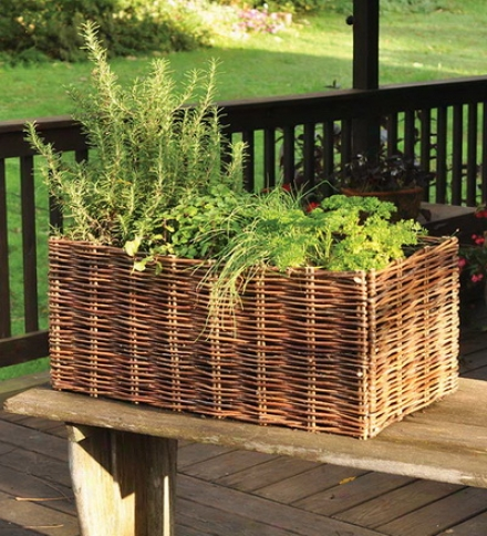 Natural Wpven Willow Herb Planter With Liner