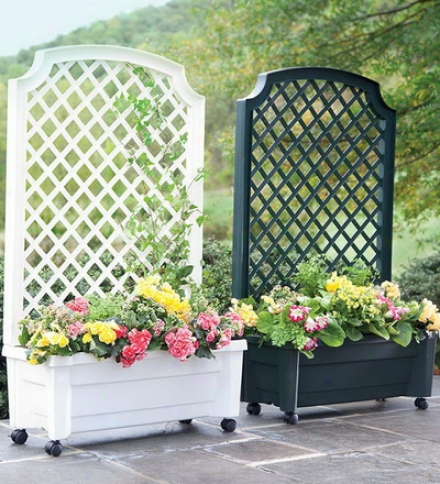 Planter Witth Trellis And Self-watering Reservoirbuy 2 Or More At $99.95 Each