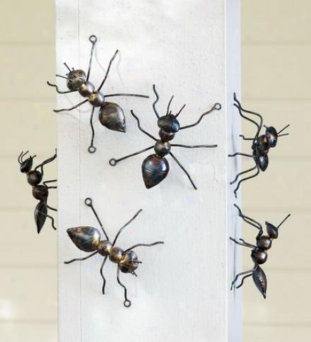 Set Of 6 Handmade Decorative Iron Ants