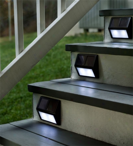 Set Of Four Solar Step Lights