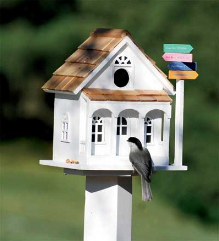 "Sign Plst Birdhouse5-1/2""d X 9""w X 7-1/2""h"