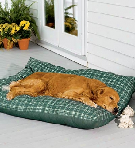 Small Weatherproof Dog Bed