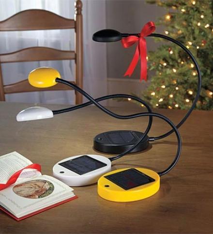 Solar Desk Lamp With Adjustalbe Gooseneck