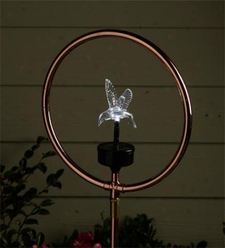Solar Hummingbird Yard And Garden Spinning Sprinkler