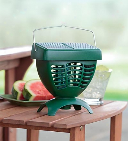 Solar-powered Mosquito Trap