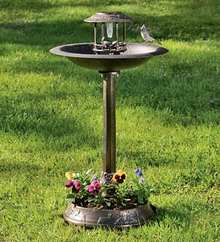 Solar-powered Vineyard Birdbath Upon Illustration And Base Planter