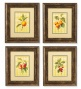 Fruit Prints, Set Of 4