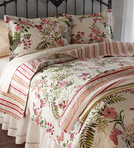 Twin 100% Cotton Butterfly Rose Quilt Set