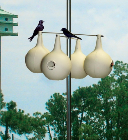 Two-piece Purple Martin Gourds, Eight-pack