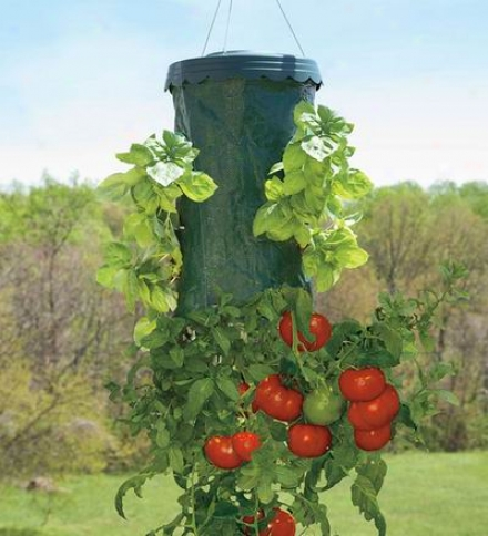"Upside-down Hanging Tomato Plus Planter9-3/4"" Dia. X 19""h"