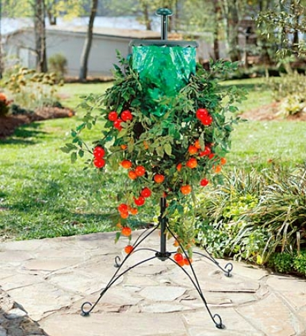 Upside Down Tomatto Tree And Stand With Vinyl Bag